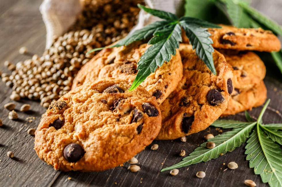 This image has an empty alt attribute; its file name is Explore-Your-Culinary-Side-with-CBD-Hemp-Flower-980x650.jpg